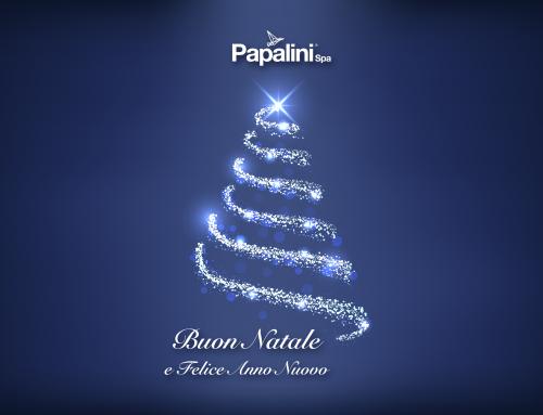 Buon Natale e Felice anno nuovo da Papalini Spa
